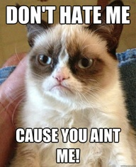 grumpy cat 6