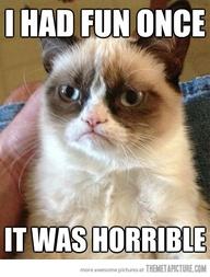 grumpy cat3