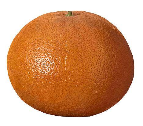 grapefruit-medium.jpg.jpg